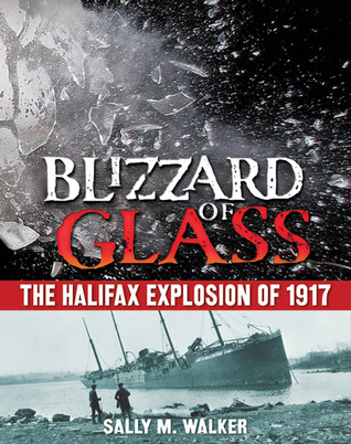 blizzard of glass image
