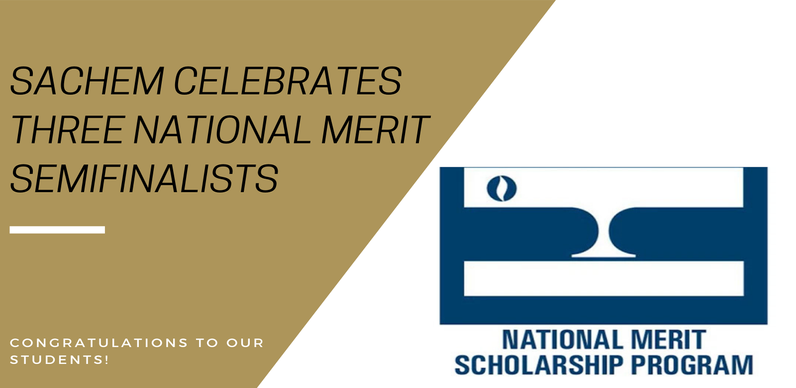 Three Sachem Students Named Semifinalists in the 2021 National Merit Scholarship Program
